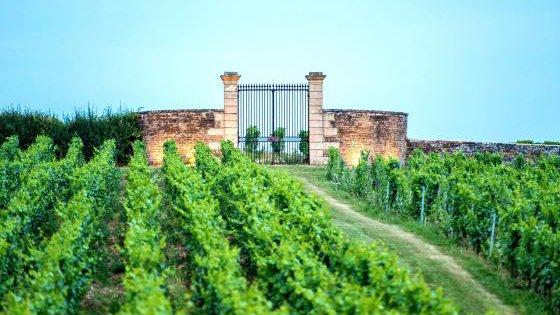 Chateau Besseuil Offres Coffrets Sejour Chateau Vignoble